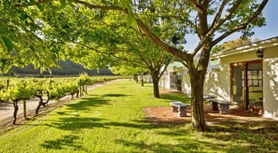 Pinotage Guest Cottage